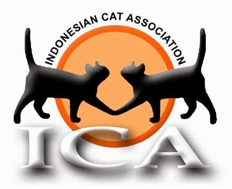Daftar Sho Kucing pet shop daftar harga kucing