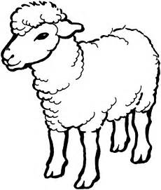coloring page of a sheep download