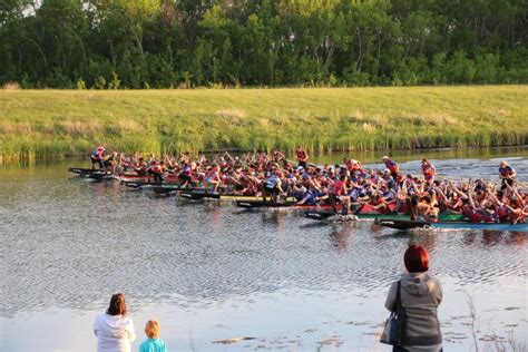 dragon boat racing winnipeg manitoba paddling association dragon boat festivals