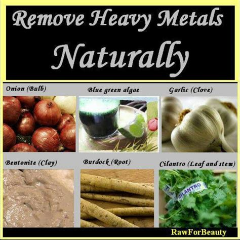 Traditional Doctors Who Prescribe Heavy Metal Detoxing by 7 Best Create From Science Images On