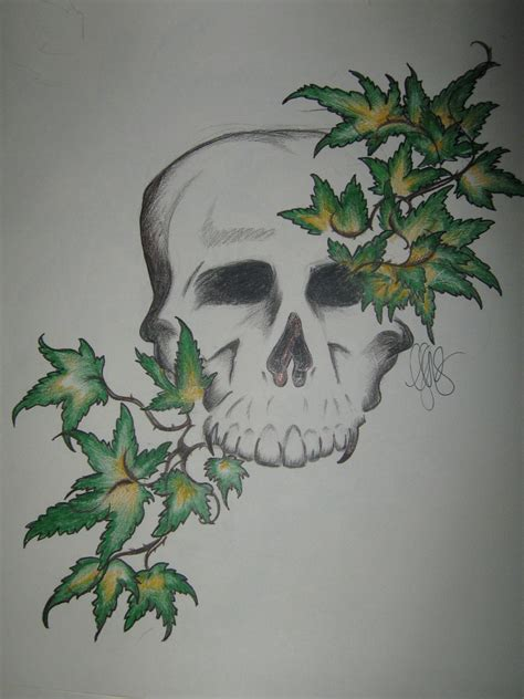 ivy tattoos designs skull simply picture