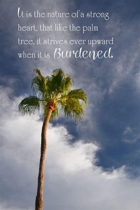 tree quotes tree quotes quotesgram