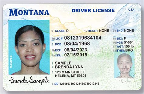 michigan id card template new look licenses rolled out across montana state