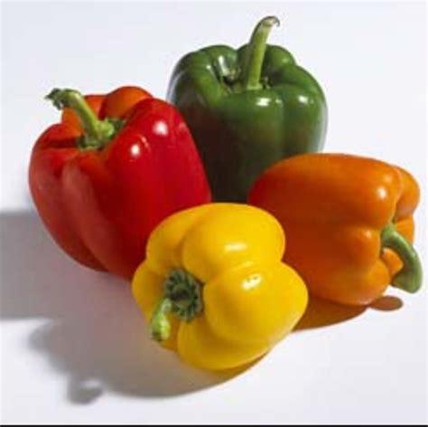 neetu s tasty treats vegetarian stuffed bell peppers
