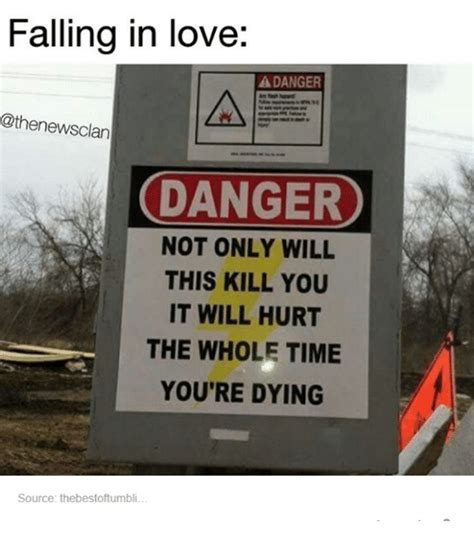 Falling In Love Memes - falling in love a danger danger not only will this kill