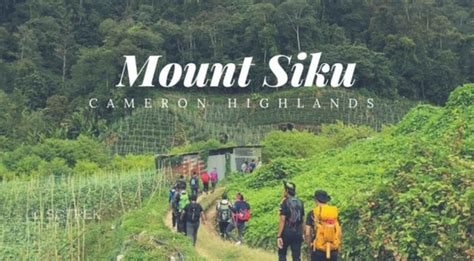 mount siku cameron highlands sgtrek