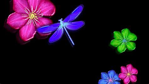 imagenes para fondo de pantalla de tatuajes fondos de pantalla lib 233 lula foto fondos de pantalla