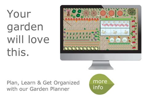 garden layout tool garden layout tool free garden planner software free