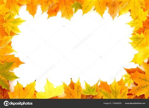 cornice autunno foglie di castagno autunno cornice foto stock