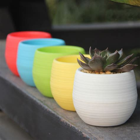 Pot Bunga Mini 1 mini pot bunga hias kaktus tanaman 5pcs multi color