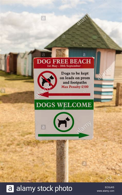 direction sign for free dogs welcome on
