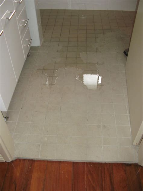 area floor drainage bathroom shower toilet and
