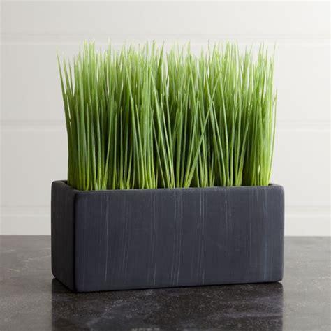 delightful Large Wall Decor Ideas #5: 77b59f5537b85d89cb598e62fda8a801--large-indoor-plants-plastic-grass.jpg