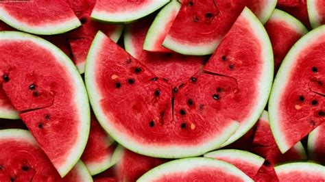can eat watermelon 10 reasons why your won t eat barking royalty