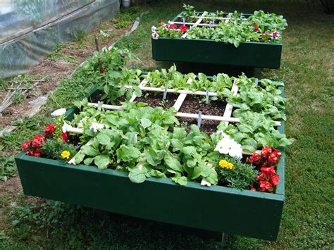 Raised Box Garden by Square Foot Gardening