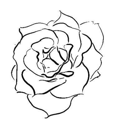 open rose tattoos sketch a in digital ink roses tattoos