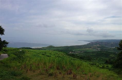 best view cherry tree hill barbados parlour magazine