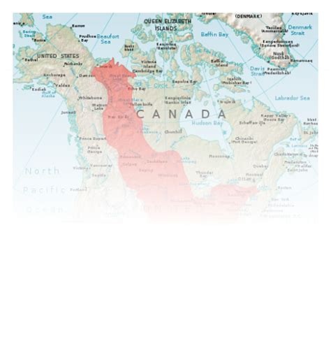 Where Is The Interior Plains Located In Canada by Interior Plains The Regions Of Canada