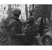 In 1968 The Tet Offensive Began South Vietnam – Dr