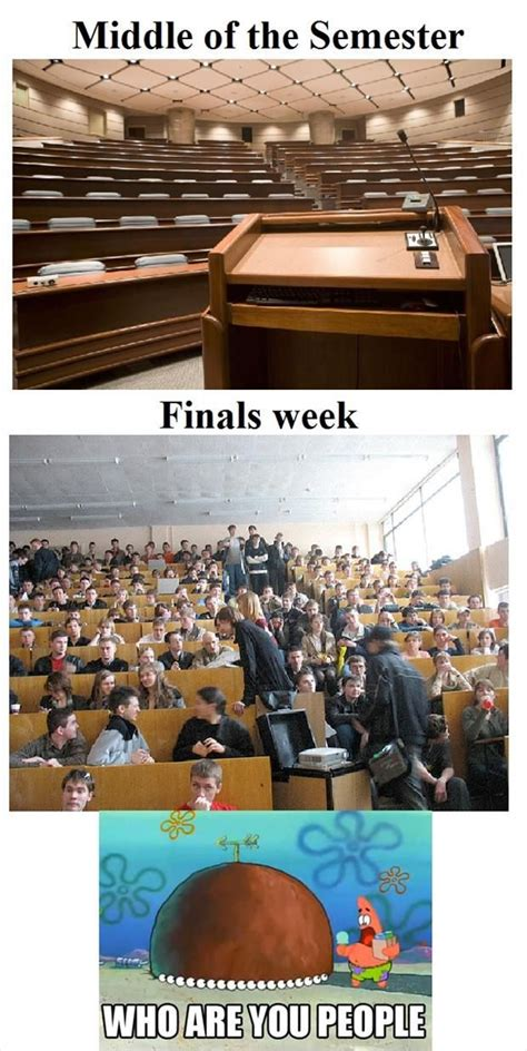 1000 ideas about finals week funny on pinterest hey