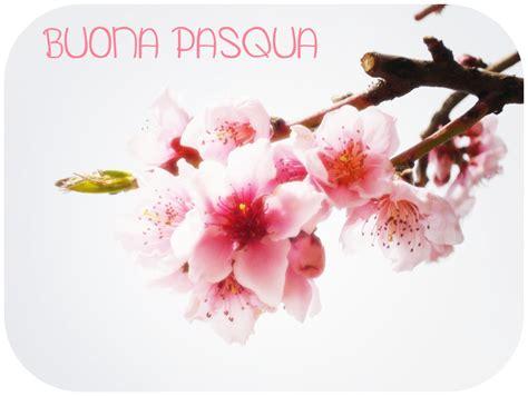 fiori di pasqua fiore di pasqua cantiere poesia
