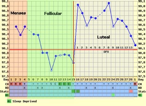 Termometer Suhu Basal mengetahui masa subur perempuan