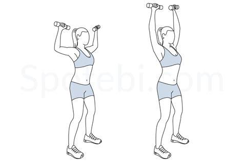 shoulder press diagram dumbbell shoulder press illustrated exercise guide