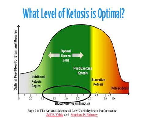 ketosis measuring ketones the ketodiet