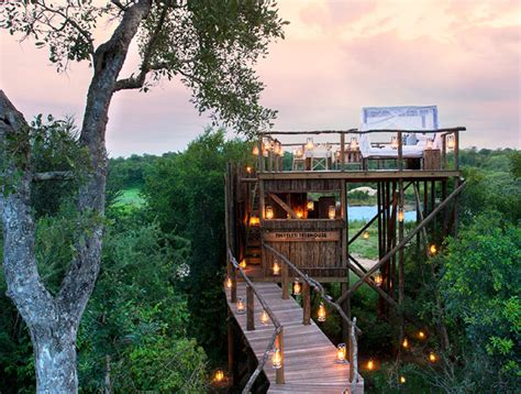 team tree house luxury treehouses in south africa lion sands game
