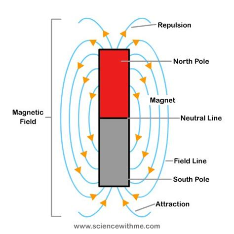 Poluper Magnet Kulkas Dd 2 magnetic for www pixshark images galleries with a bite