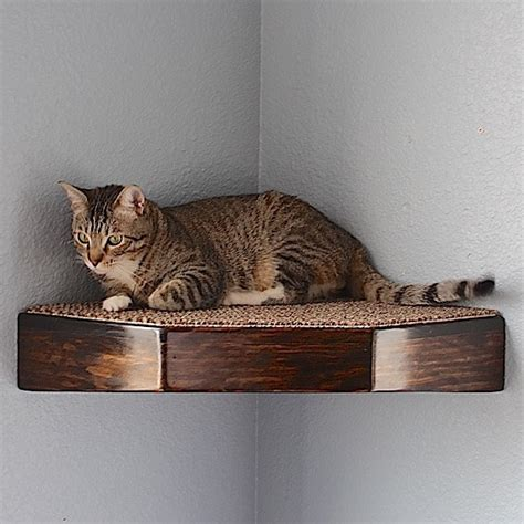 cat corner wall shelf floating stained wood style