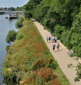 one of the world s greatest escapades london s thames path beats sydney and berlin in list of