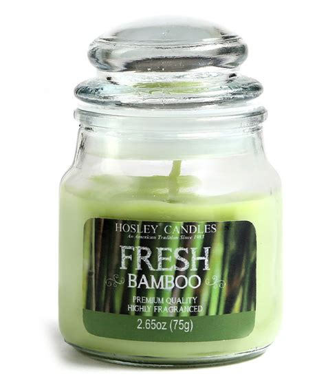 Fresh Green Light by Hosley Light Green Fresh Bamboo Small Jar Candle Buy