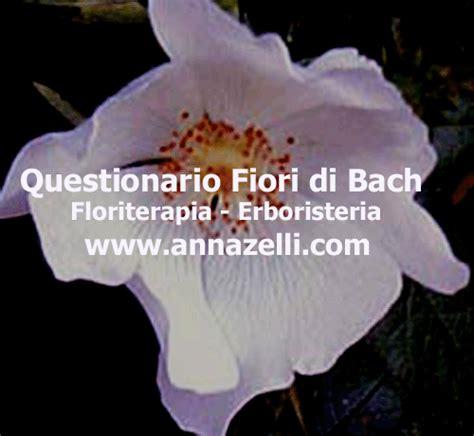 questionario fiori di bach questionario fiori di bach questionario fiori di bach