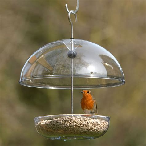 awesome bird feeder dome 27 bird feeder weather dome uk