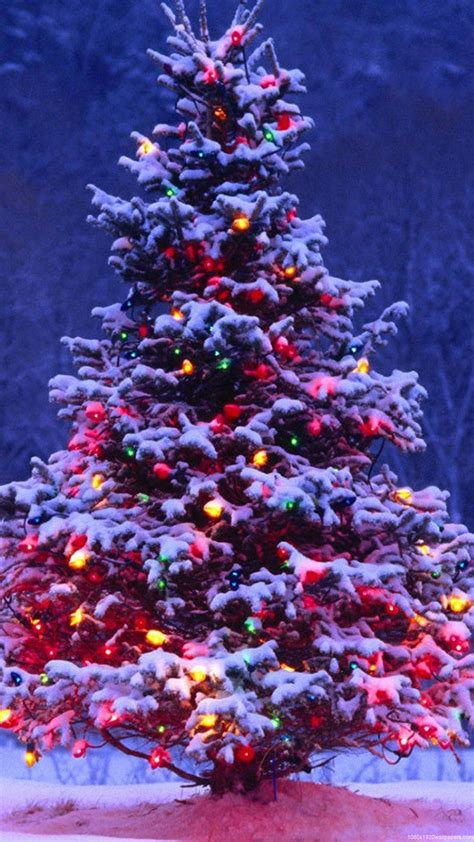 iphone hd christmas tree wallpaper 1080x1920 light tree wallpapers hd
