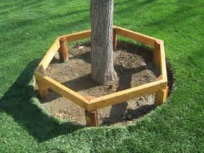 Tree Ring Bench Professor Playground Professor S Blog