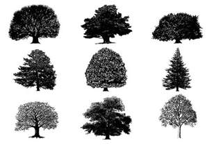 Online Landscape Design Service silhouette tree brushes pack free photoshop brushes at
