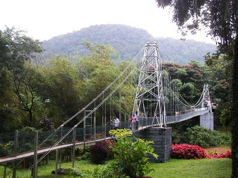 peradeniya botanical gardens peradeniya garden travellerbank
