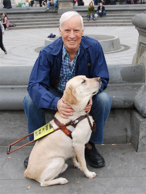 how to seeing eye dogs seeing eye horses and dogs and more