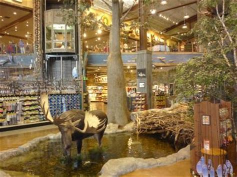 The Backyard Store by Bass Pro Shops Foxboro Ma Outdoor Recreation Store In