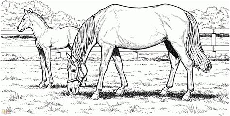 printable coloring pages of realistic horses coloring pages realistic free printable realistic