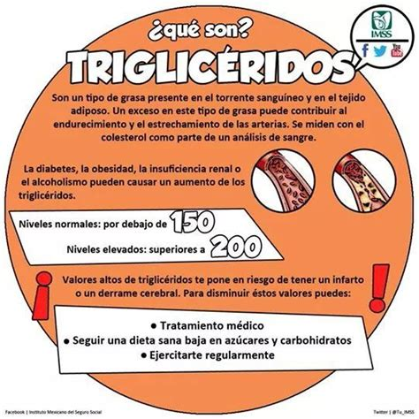 trigliceridos alimentos 1000 images about trigliceridos on salud