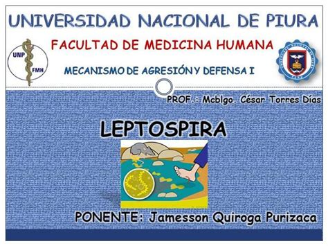 Leptospirosis Card Template by Leptospira Authorstream