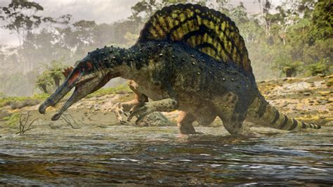 The Dinosauria spinosaurus dinosaurs image 28701081 fanpop