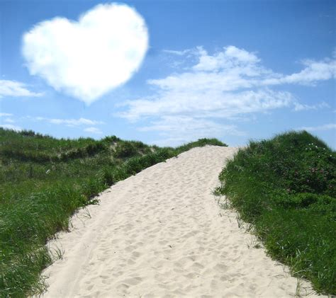 whats in a cape cod what s your cape cod martha s vineyard or nantucket