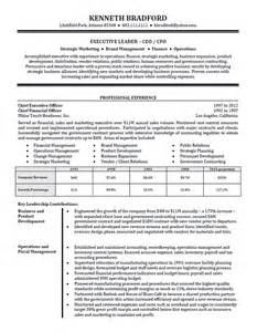 ceo resume sles high level executive resume exle sle