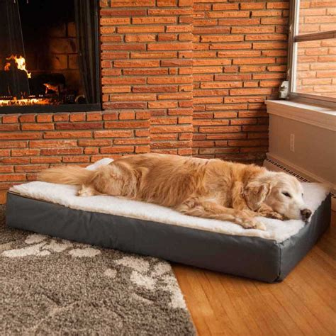kirkland dog sofa bed kirkland dog sofa bed hmmius dog beds and costumes