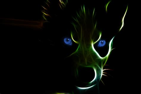 when is a not a puppy anymore just discovered fractalius and i m rather pleased by my attempt rebrn