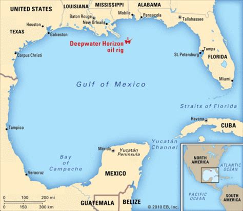 map of gulf of mexico ga 6th grade social studies d1 geography